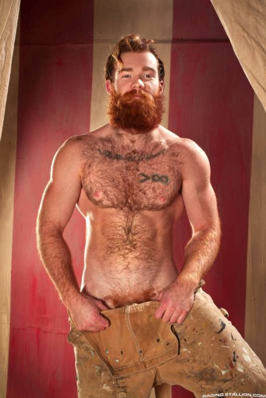 Hairy Ginger 98